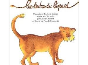 les-taches-du-leopard2