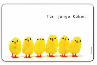 fr151_fuer_junge_kueken22