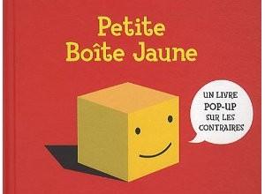 petite-boite-jaune3