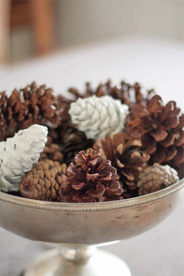 Paint_Dipped_Pinecones2