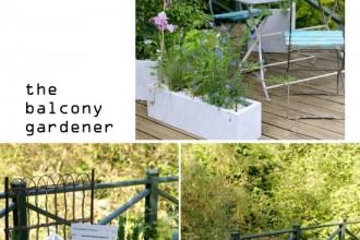 the-balcony-gardener2