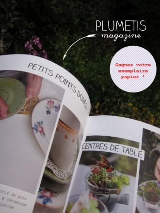 plumetis-papier-concours2
