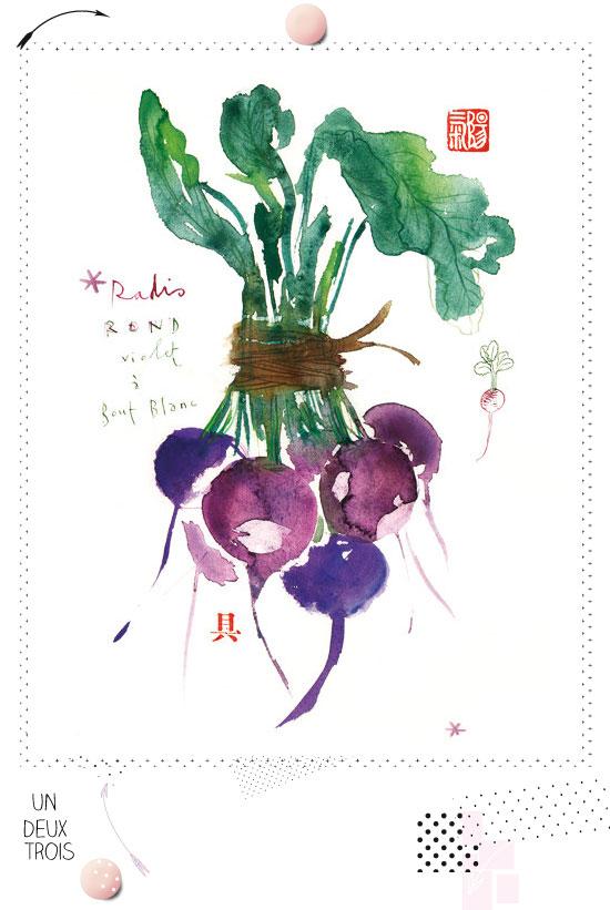 Bouquet de radis