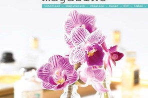couv_plumetis-magazine-13_bd2