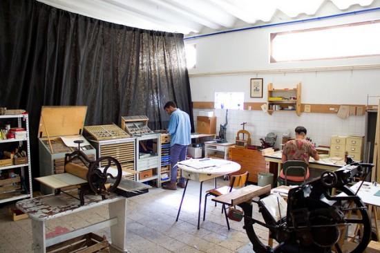 arminho-studio