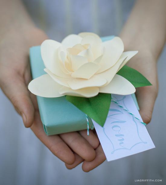 gardenia papier liagriffith