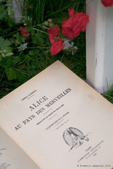 Alice-Plumetis-10