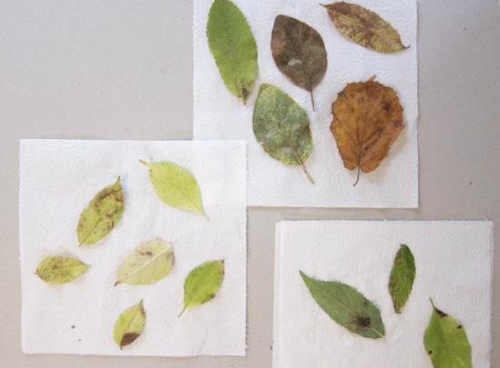 DIY Fabric + Leaf