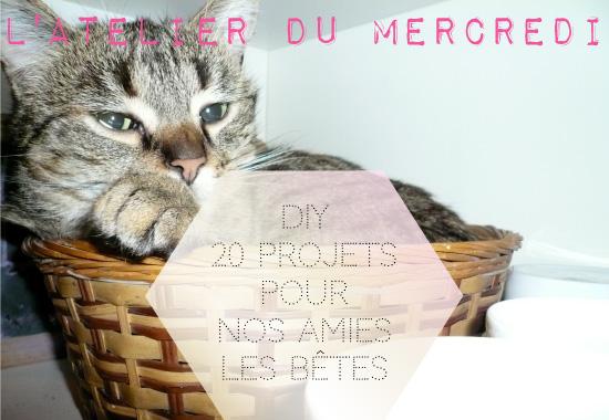 20 DIY pour chiens et chats