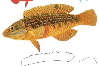 printable-poisson-avril-april-fools