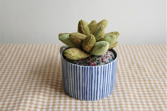 succulent // Sian Keegan
