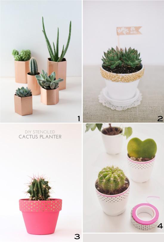 petits pots de succulentes {diy}