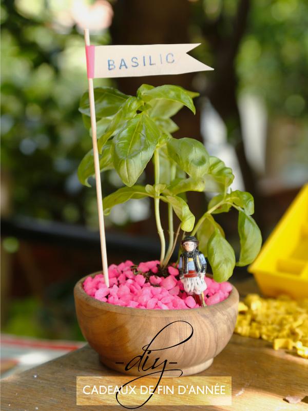 Plantes Petit Pot En Pastisque Pour Decorer