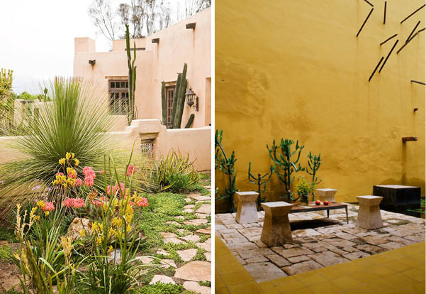 Desert decor trends
