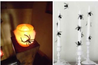 araignees halloween