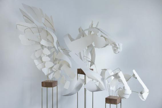 Pegasus // Anna-Wili Highfield