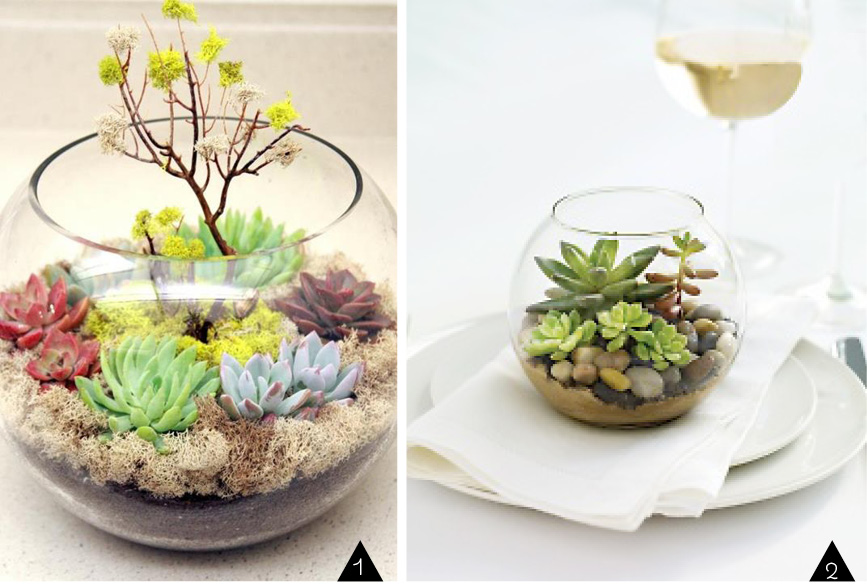 Recycler Un Aquarium Latelier DIY Du Mercredi