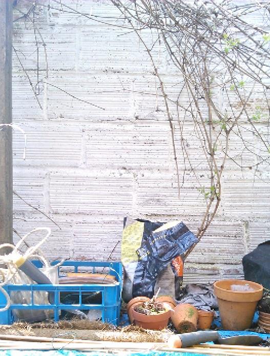 mur brique peint à la chaux // Plumetis magazine