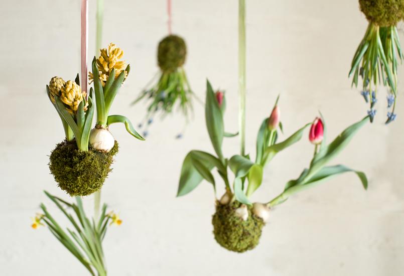 Spring String Gardens // Terrain