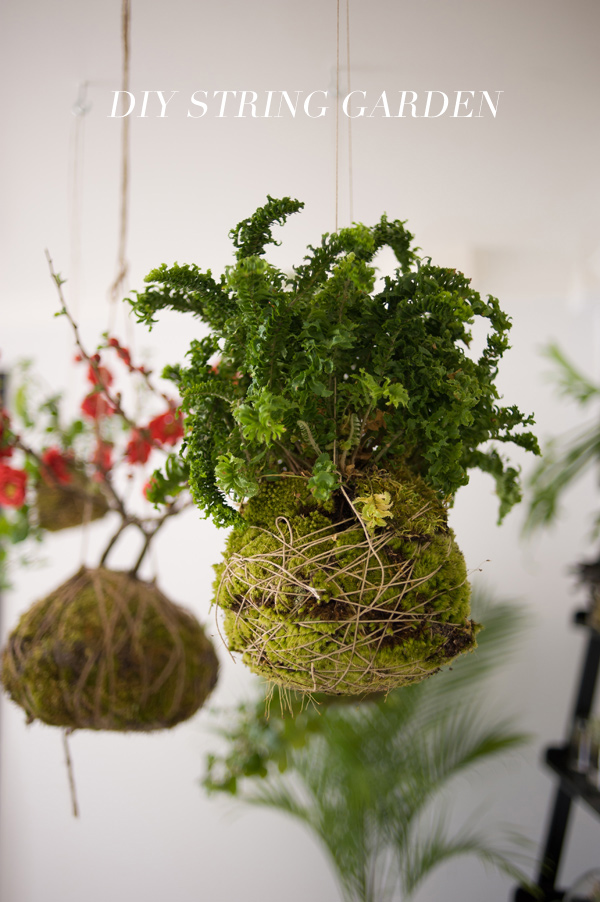 DIY string garden // Ruffled