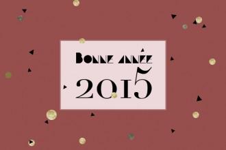 voeux 2015 plumetis3
