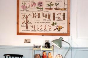 retro market botanical vintage