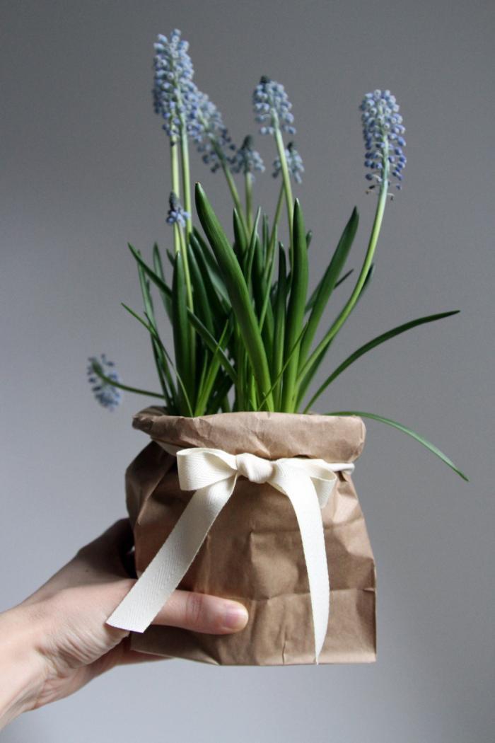 Muscari-in-bag-presentation