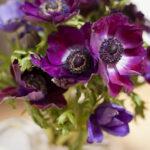 bouquet-anemone-plumetis