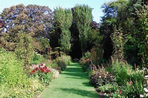 the secret gardens of Sandwich // plumetis
