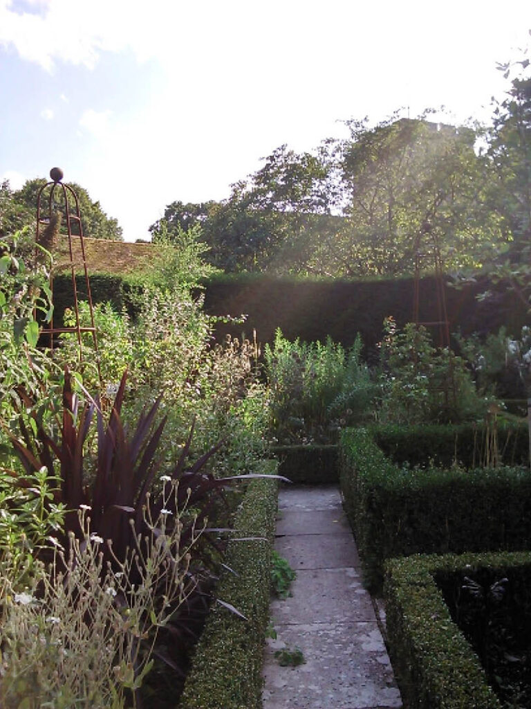 the secret gardens of Sandwich // plumetis