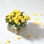 Le vase carré