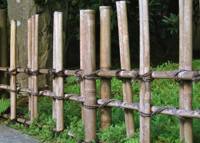 Bamboo fence between Tea Garden and Lower Pond // Rosewoman