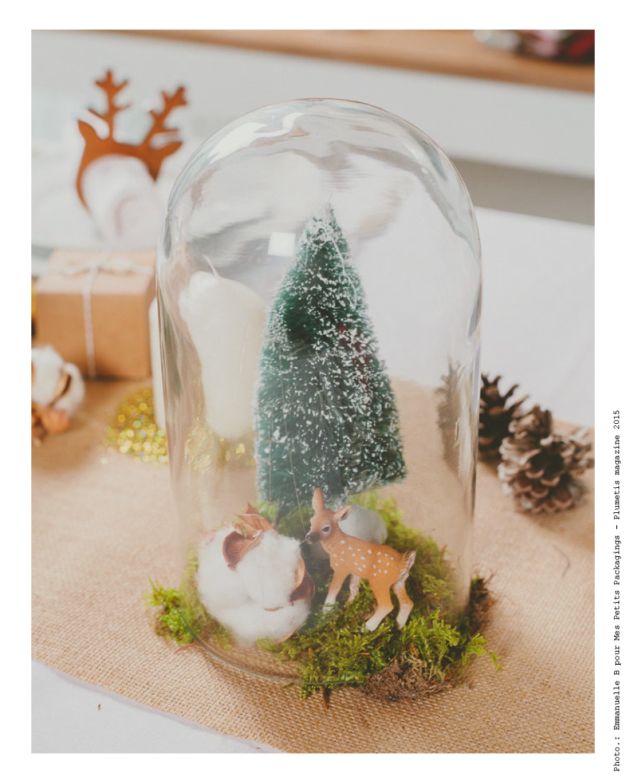 decoration sous cloche