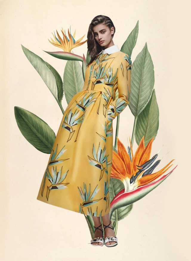 miss-moss-botanical-resort-fendi