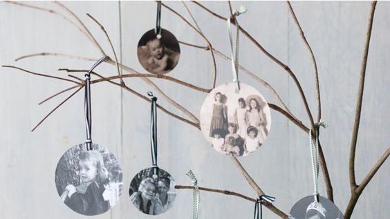 How to create a family tree // Homelife