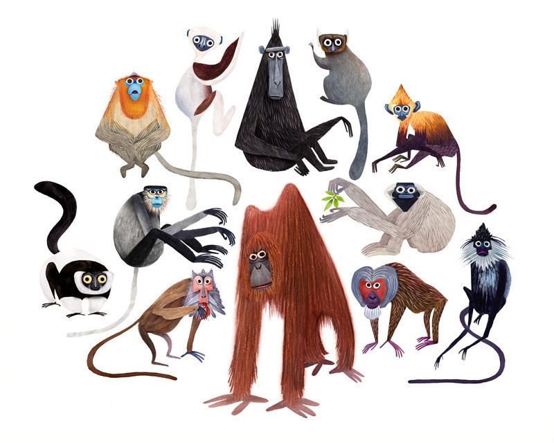 primates-Brendan-Wenzel