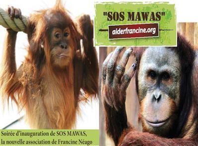 sos-mawas
