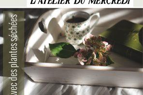 diy-herbs-plantes-sechees