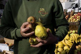 Agriculteur vantant les mérites de ses fruits biologiques au marché