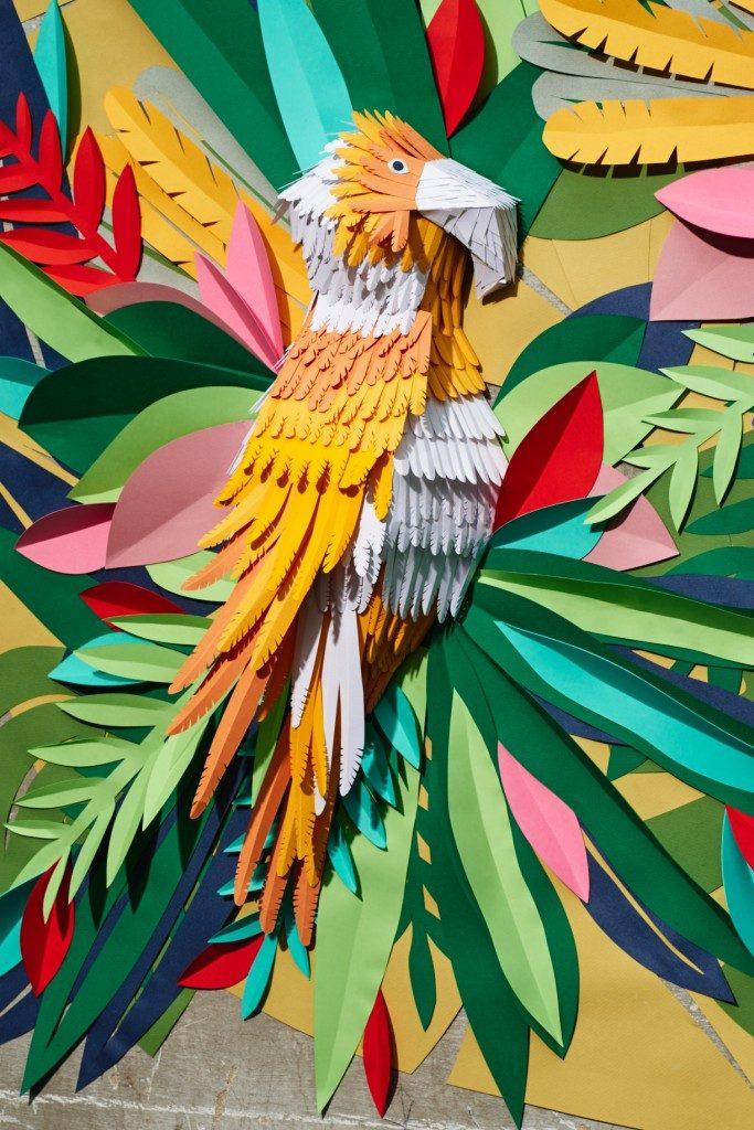 tropical-jungle-parrot