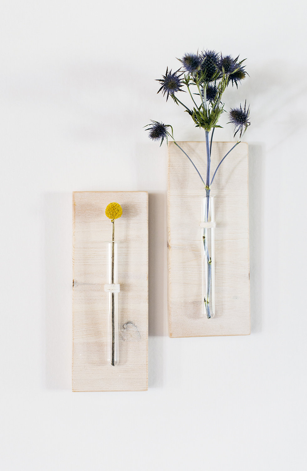 DIY- TEST TUBE VASE