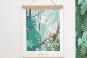 Tropical2-pramax