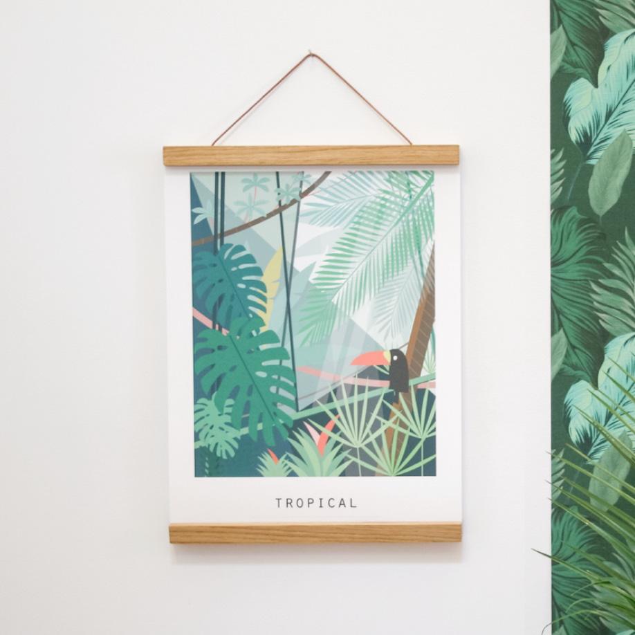 Tropical2-pramax