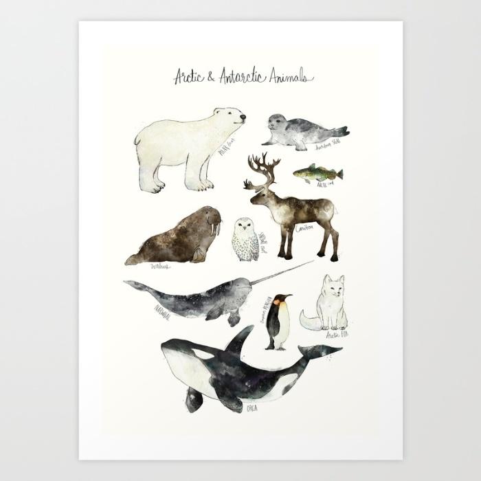 arctic-animals-amy-hamilton