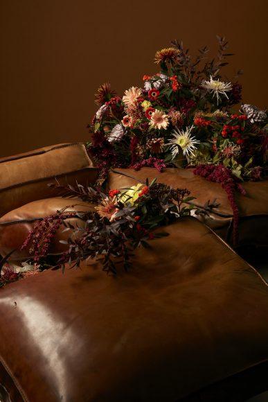 Epiphyte-dialogue floral-Debeaulieu - 2