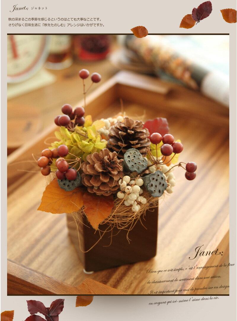 Comment Conserver Des Fleurs Séchées la technique des fleurs stabilisées - plumetis magazine