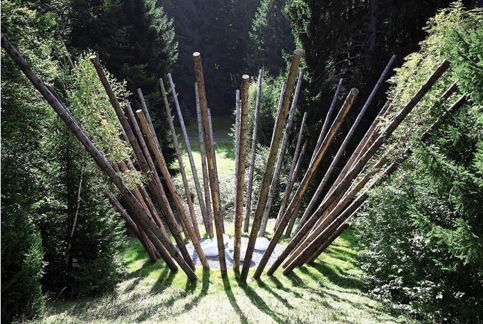 Black bamboo, Nils Udo